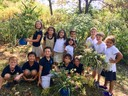 Second graders gather wildflowers, make floral arrangements