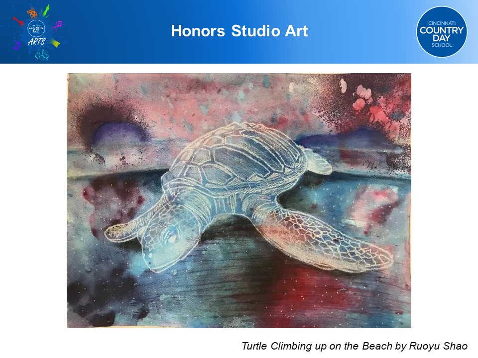 CCDS Honors Art